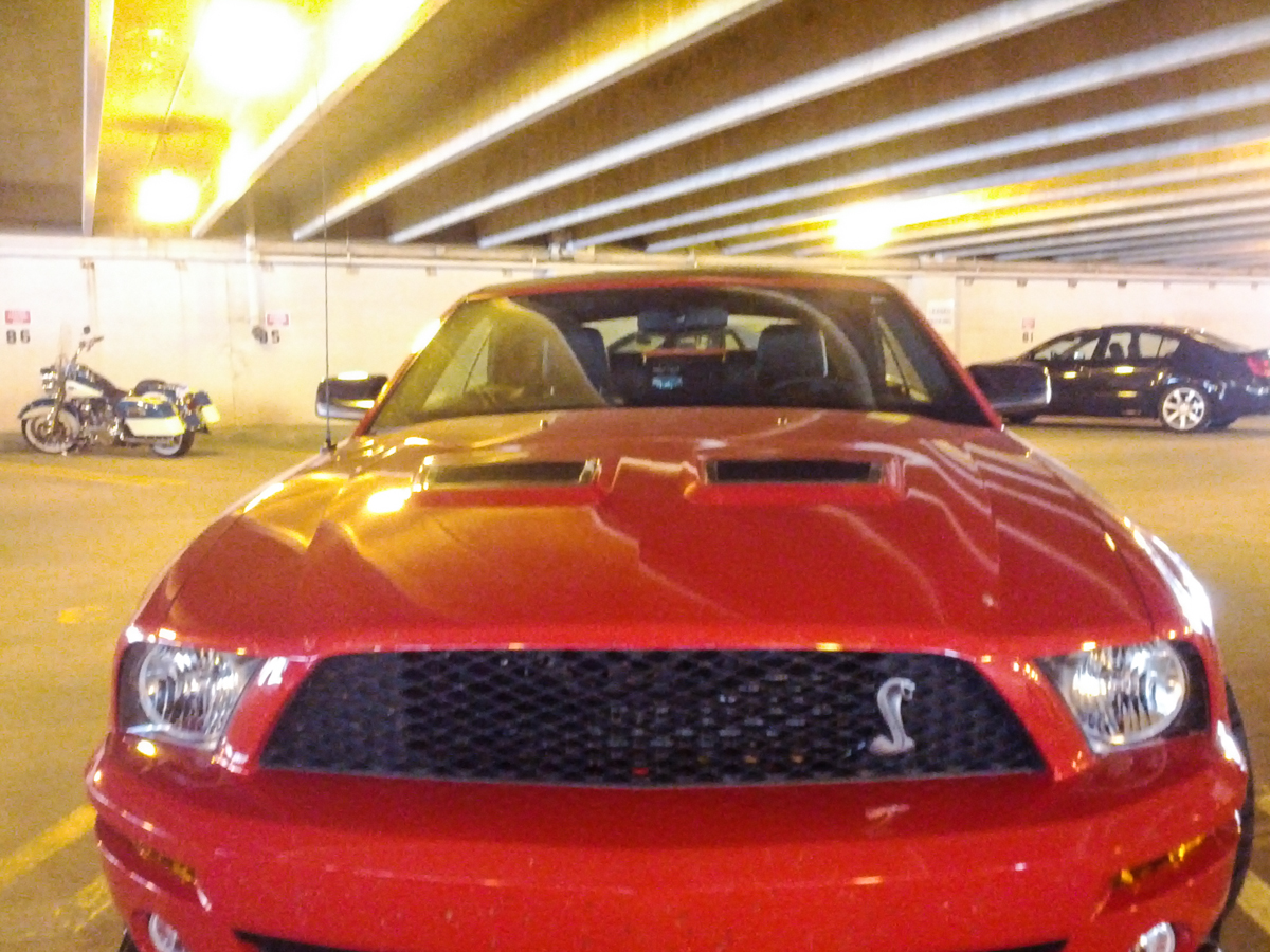 Ford Mustang Shelby GT500-1